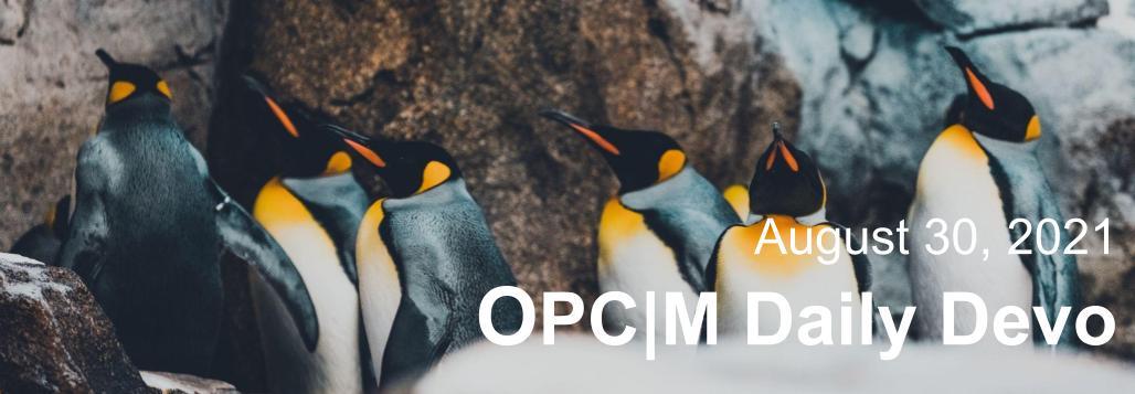 August 30th devo image, penguins.