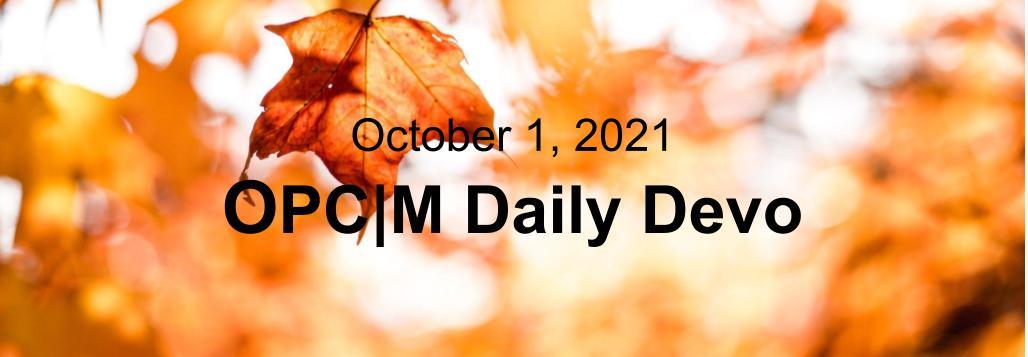 October 1st devo image, orange leaves.
