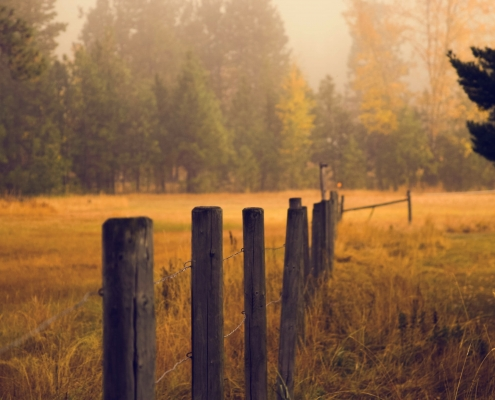 October 14th devo image, a wooden fence in a field.